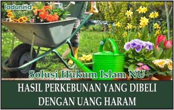 Uang Haram yang Digunakan untuk Membeli Kebun