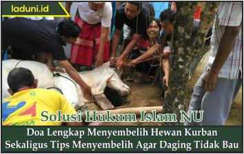Doa Lengkap Menyembelih Hewan Kurban Sekaligus Tips Menyembelih Agar Daging Tidak Bau