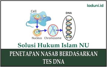 Penetapan Nasab Berdasarkan Tes DNA