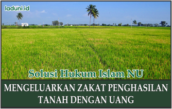 Hukum Mengeluarkan Zakat Penghasilan Tanah dengan Uang