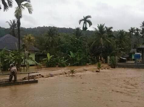 Selain Rumah, 1 Hektar Sawah di Tangse Ikut Terendam Banjir
