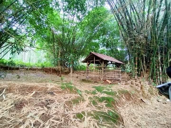 Kisah Pencarian Makam Guru Pangeran Diponegoro, Habib Alwi bin Yahya