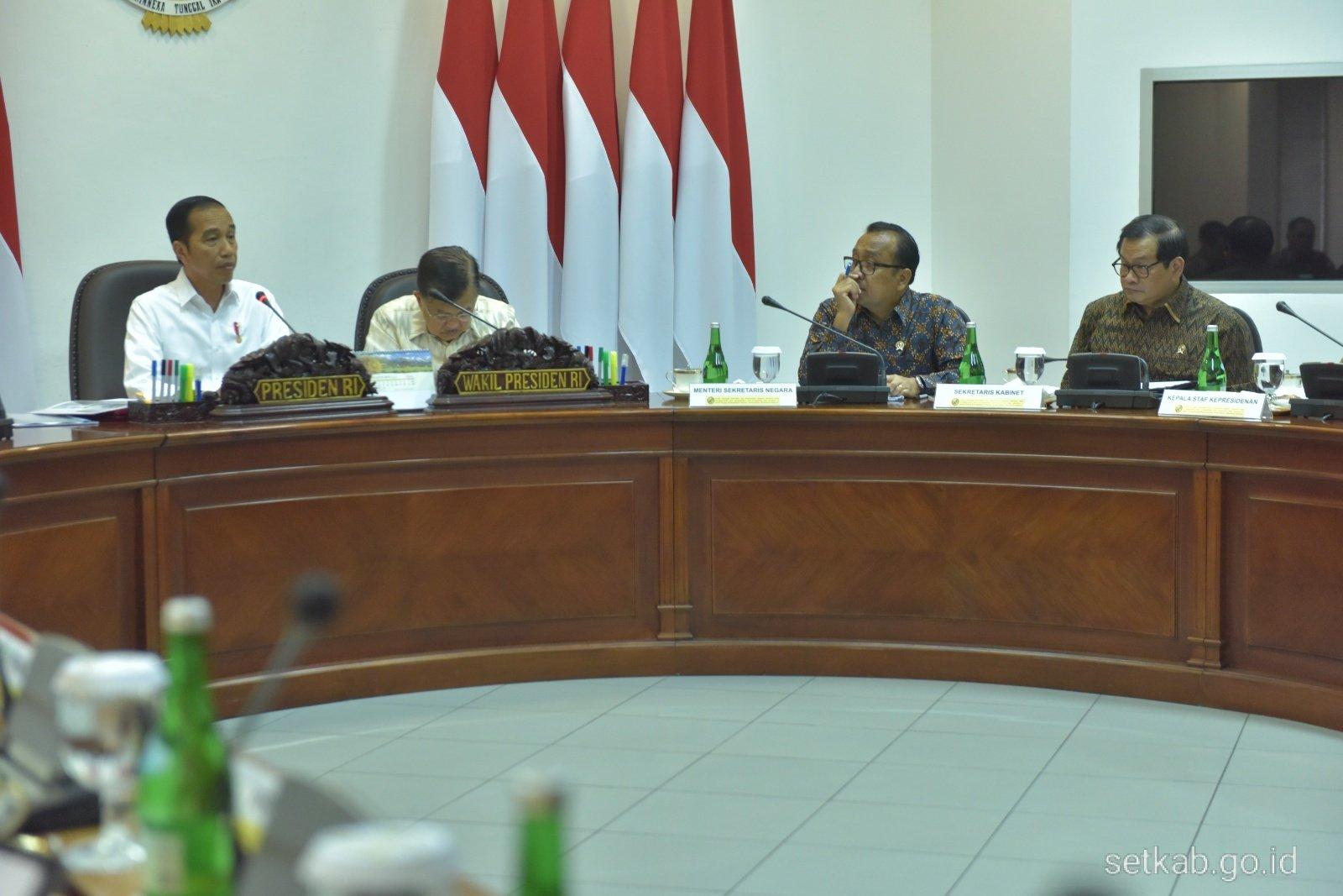 Presiden Jokowi Arahkan Kelapa Sawit Menjadi Bahan Bakar Berjenis 'Green Avtur'