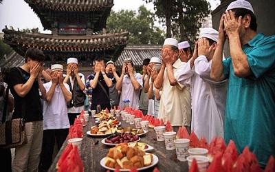 Musslidsm-Cina.jpg