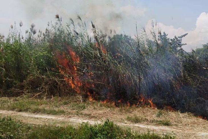 Kebakaran Lahan Mulai Terjadi di Lhokseumawe