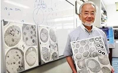 Penemuan Ilmuan: Tubuh yang Lapar Bisa Bersihkan Dirinya Sendiri
