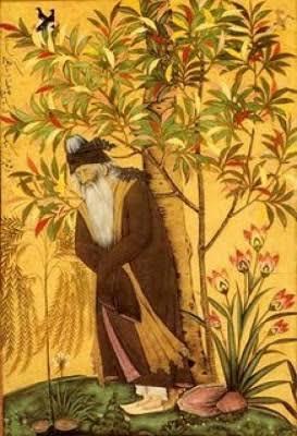 Kisah Sang Sufi dan Seekor Kupu-kupu