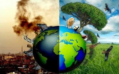Begini Pesan Kitab Alfiyyah untuk Para Perusak Bumi