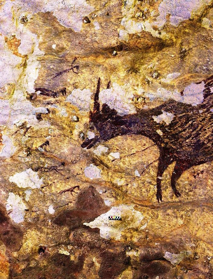 Lukisan Gua dari Sulawesi Terpilih Jadi Karya Figuratif Tertua di Dunia